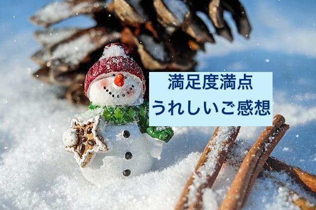 snow-man-1882635_640