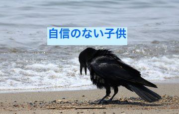animal-2336661_640