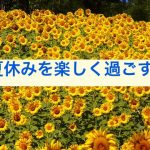 sunflowers-76119_640