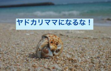 hermit-crab-760725_640
