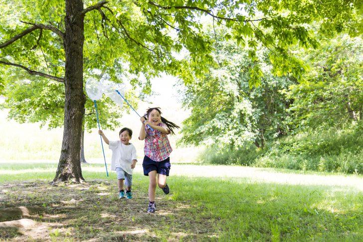 虫取り網を持ち笑顔で虫を追いかける子供2人